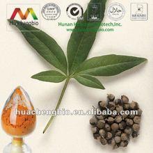 ISO&Kosher 2%-5% Vitexin/Agnuside Chasteberry Extract