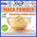natual extrait de racine de maca en poudre