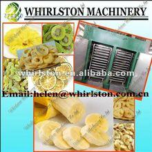 RHX warm air dryed fruit 0086 13673609924