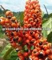 Guaraná extrato cafeína 12%