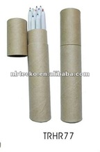 2014 popular ECO paper recycled pen with tube