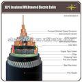 XLPE Aislado Alambre de Acero Acorazado con Cable de Energía Eléctrica Multi-centro 6/10kV