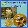 Factory Supply Curcuma Longa P.E/Curcuma Longa Extract
