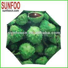 Umbrella for plants