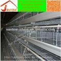 2013 caliente de la venta automática sistema de jaulas para aves vivas de los importadores