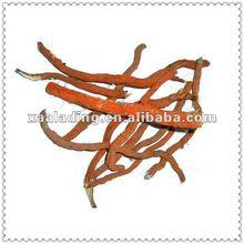 Radix Salviae Miltiorrhizae Extract