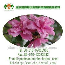 100% natrual plant extract Hibiscus Flower extract