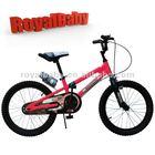Royalbaby children triathlon bike