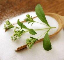 Great Taste Stevia Powder