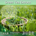 Té verde P.E. -- 50 - 99% Epigallocatechin gallate ( EGCG ) -- 989 - 51 - 5