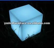 Epoxy Resin puma design 40cm fancy plastic cube