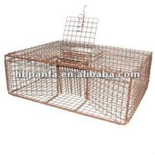 """Pigeon Trap /16 gauge 1"""" x 1"""" wire mesh"""
