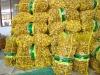 Laiwu Wanxin fresh ginger 20kg mesh bag