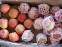 fresh fuji apple for sale 2012