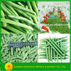 High Quality Frozen Green Beans Cut with BRC,Kosher