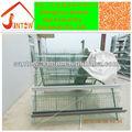 2013 popular de alta calidad buen precio aves vivas y capa de pollos de engorde jaula del pollo