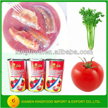 Hottest Selling Canned Mackerel Ingredient in Tomato Sauce