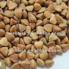 China Bulk buckwheat, 900 g roasted buckwheat, hulled and unhulled buckwheat roasting
