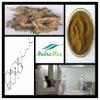 Cimicifugae racemosae rhizome Extract