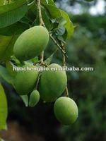 100% Natural Irvingia Gabonensis Seed Extract Powder (5%-10% Flavone,7% Albumin,1%-10% Protein,10-30% Dietary fiber)