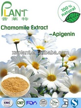 GMP Manufacturer 100%Natural Chamomile Extract white Apigenin98%HPLC