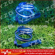 fashional safety flashing led nylon dog collar&leash with lock&custom logo on for sale