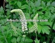 100% Natural Black Cohosh P.E. 2.5% 5% 8%