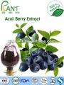 Produttore gmp 100% naturale acai berry