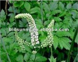 100% Natural Black Cohosh P.E. Cimicifugoside