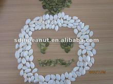 edible white pumpkin seeds
