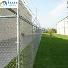 Chain link fence animal cages
