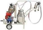 Single bucket cow portable milking machine(milking 20cow /hour)