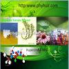 Huperzine Serrate Extract HuperizineA 98white powder