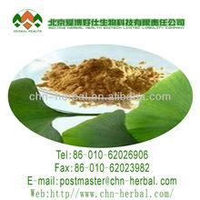 Health care natural ginkgo biloba leaf extract,GMP Ginkgo biloba leaves tea bag cut