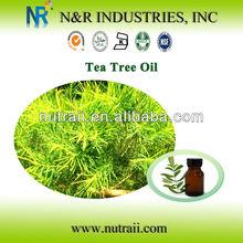 High Quality Herbal Extract Tea Tree Oil(Tea Tree Oil Seeds from Australia)