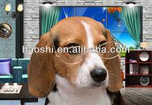 3 D poster of lovely dog