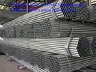 boiler tube & seamless steel pipe