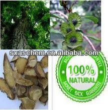 supply 100% pure cyclocarya paliurus extract 4:1/10:1 in stock with low price,cyclocarya paliurus