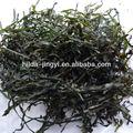 2013 crop meilleur gonflement pas sable séchage à la machine de algues laminaria déchiqueté