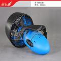 Elektro-motor tauchen 300w