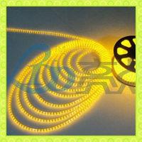 Newst SMD3528 60LEDs/m ip65high luminance dmx rgb led strip light