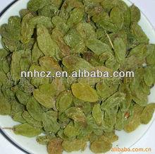 Nuts And Raisins Of Grape raisins sultana