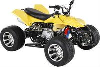 110cc atv with reverse LD-006