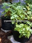 garden planter bag