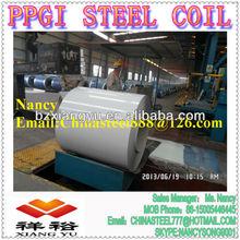 Color Coated PPGI RAL 9016 Ship on Qingdao port