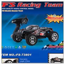 FS-73801 1/18 2.4G Waterprrof EP Monster Truck RC CAR