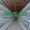 Cages laying hens with the lowest price (2013 factory)