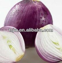 No pesticide onion