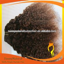 Dark Brown Malaysian Kinky Curly Hair