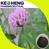 high quality red clover extract/red clover leaf extract